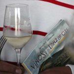 La añada 2014 del vino DO Lanzarote, excelente