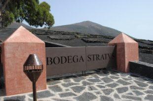 Bodega Stratvs