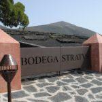 ¿Quieres trabajar en Bodegas Stratvs?