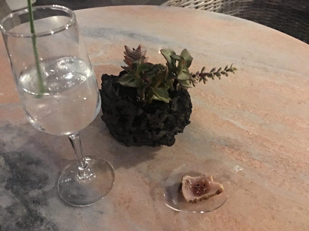 Tataki de atún y gin-tonic Ave del Paraíso