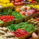 El sector primario y la industria alimentaria, servicios esenciales